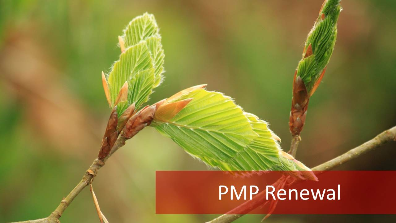 2018 Pmp Certification Renewal Easiest Path For Pmp Renewal