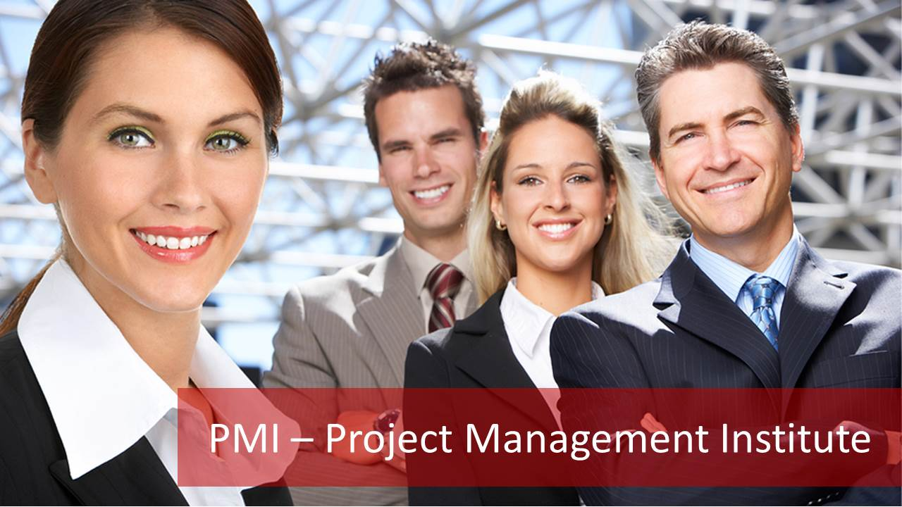 pmi institute