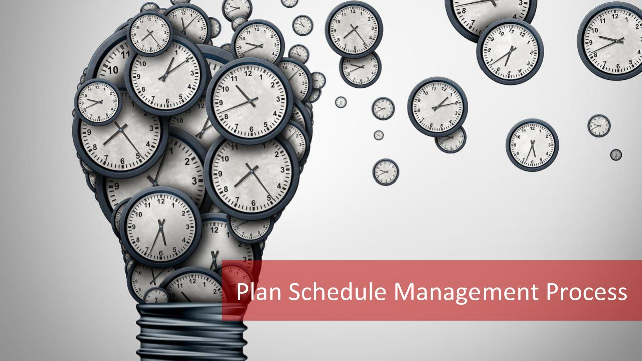 Plan Schedule Management Process