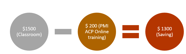 PMI ACP Online Training