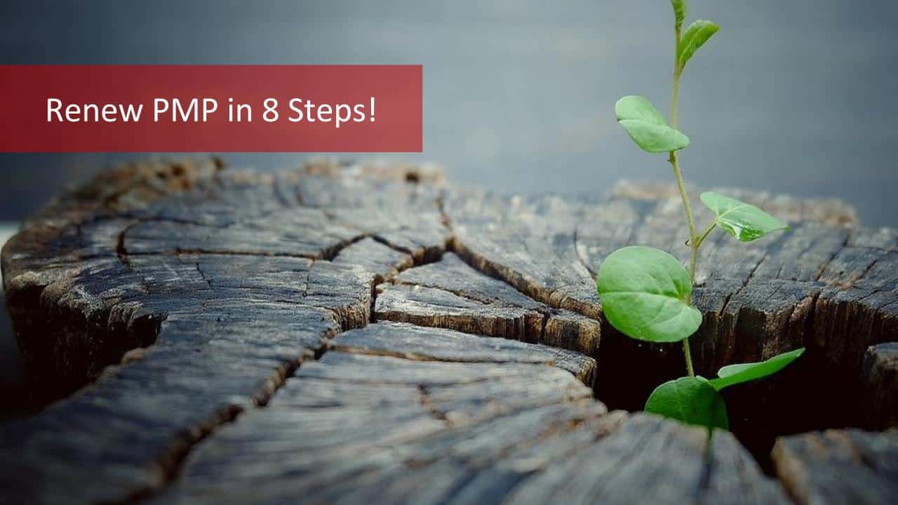8 Steps To Renew Pmp Certification Dont Risk Your Renew Pmp Process