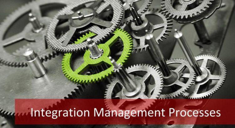 Integration Management Processes